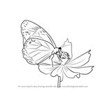How to Draw a Butterfly on Flower