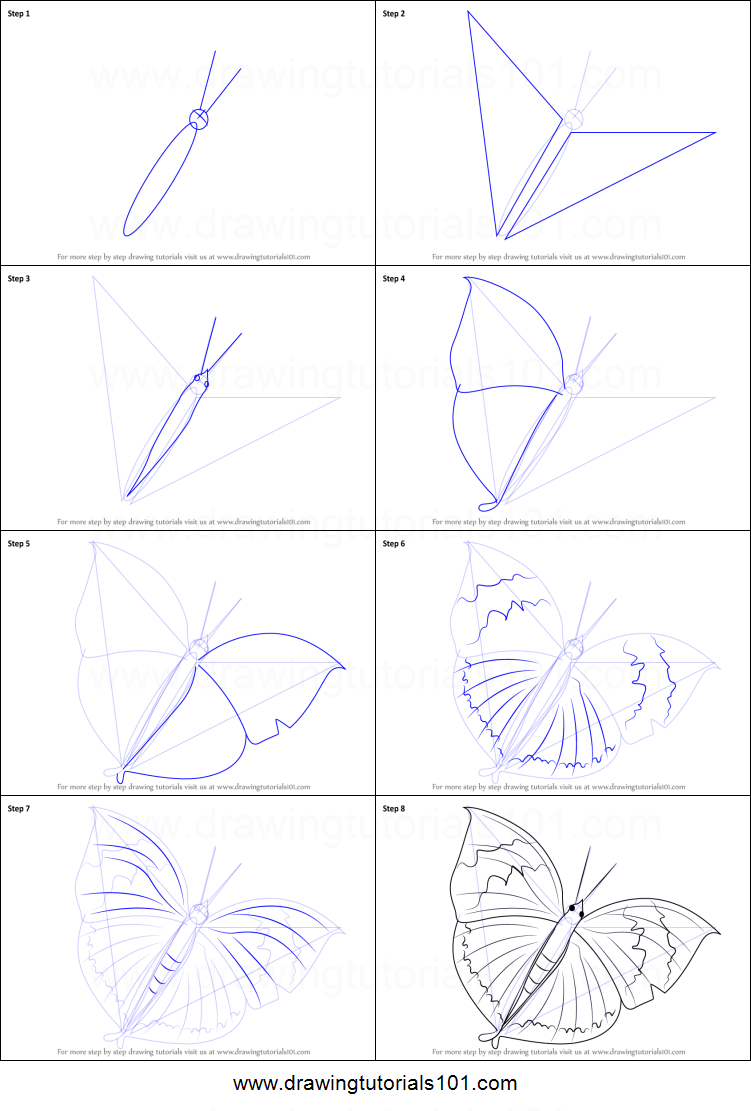 How to draw an orange oakleaf butterfly printable step by for How to make a butterfly drawing