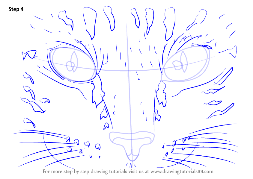 Learn How To Draw Cat Eyes Cats Step By Step Drawing