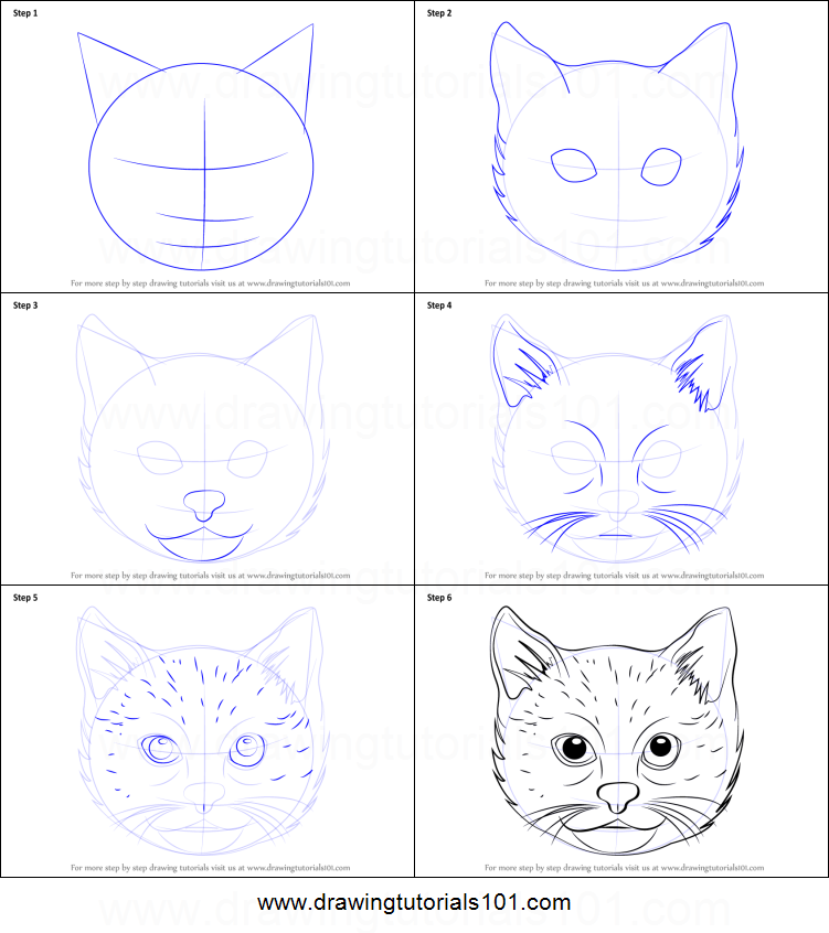 How to draw a cat face printable step by step drawing sheet drawingtutorials101 com