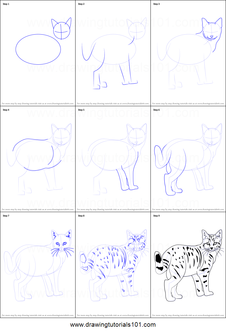 How To Draw A Kitten Printable Step By Step Drawing Sheet