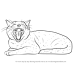 How to Draw Yawning Cat
