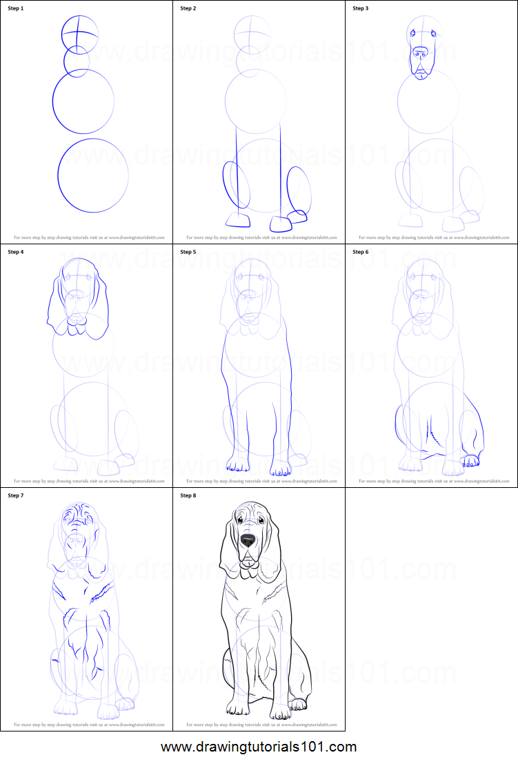videos of how to draw dogs step by step