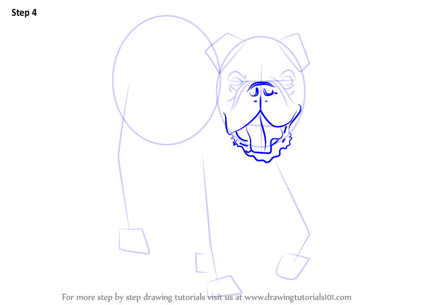 how to draw a bulldog puppy step by step