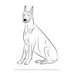 How to Draw a Doberman