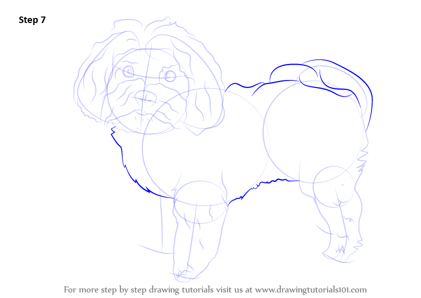 how to draw a dog body step by step