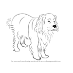 How to Draw a Newfoundland Dog