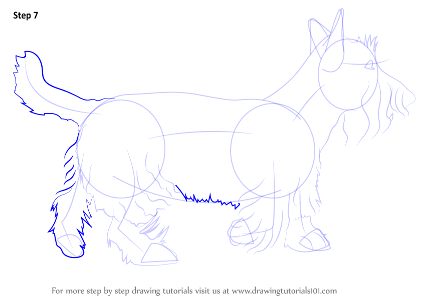 Learn How to Draw a Scottie Dog (Dogs) Step by Step : Drawing Tutorials
