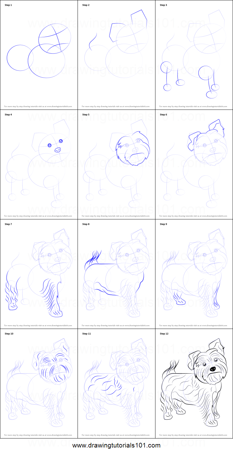 step by step how to draw a cartoon dog