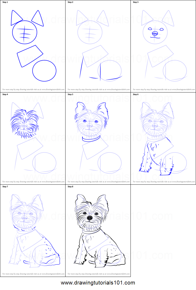 How To Draw Yorkie Puppy Printable Step By Step Drawing Sheet Drawingtutorials101 Com