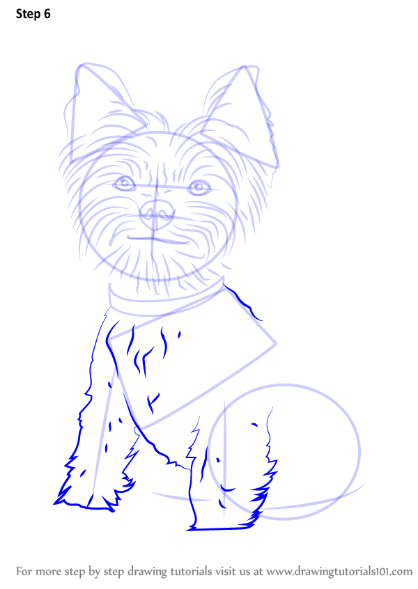 Learn How to Draw Yorkie Puppy