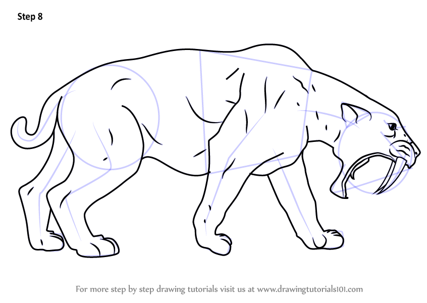 Learn How to Draw a Sabertoothed