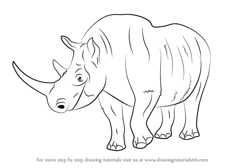 Image of: Dinosaur Learn How To Draw Woolly Rhinoceros extinct Animals Step By Step Drawing Tutorials Drawingtutorials101com Learn How To Draw Woolly Rhinoceros extinct Animals Step By Step
