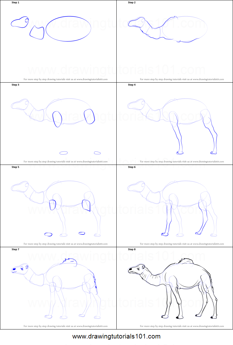 Uncategorized How To Draw A Camel Step By Step how to draw a camel printable step by drawing sheet drawingtutorials101 com