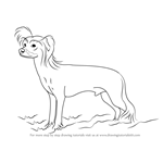 How to Draw a Chinese Crested Dog