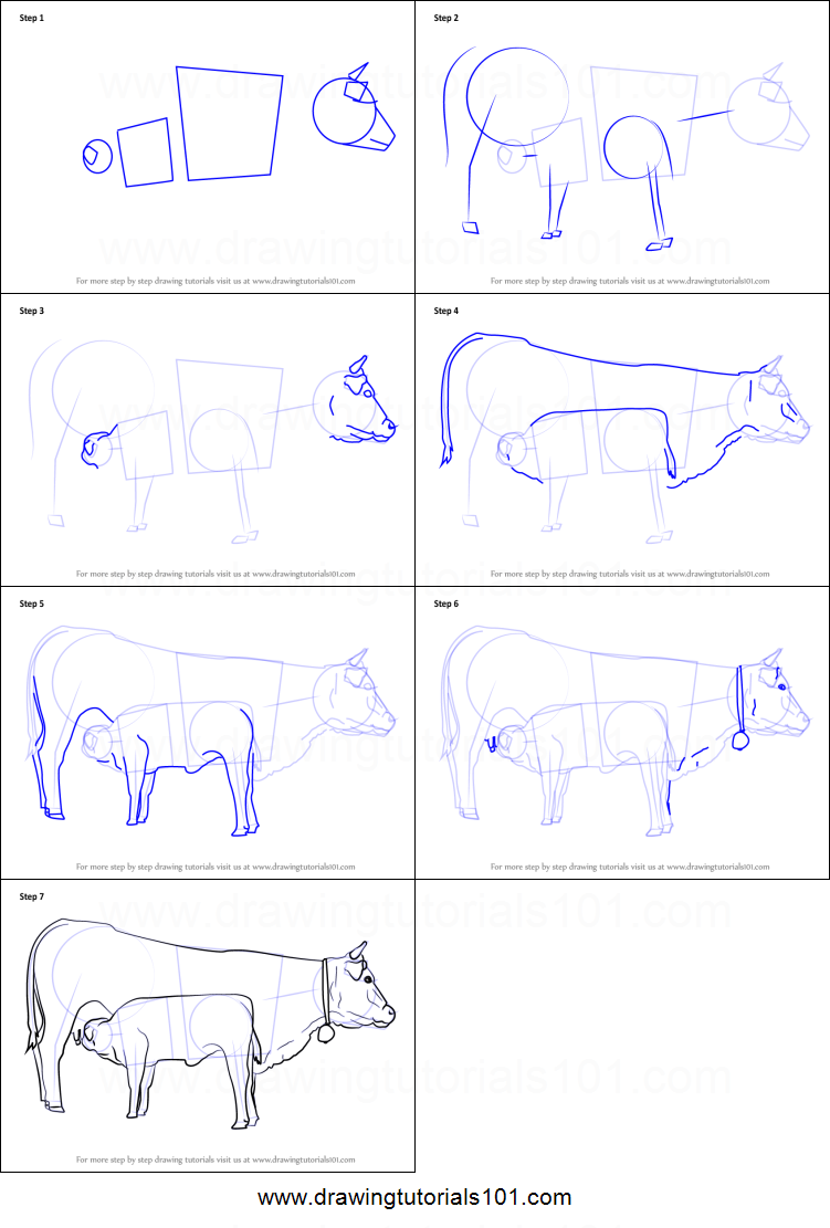 How to Draw Cow And Young Calf printable step by step