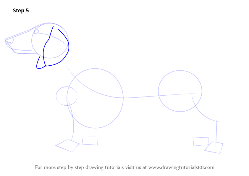 Learn how to draw a dachshund farm animals step by step for How to draw a farmhouse
