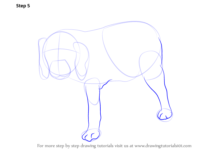 how to draw dog feet