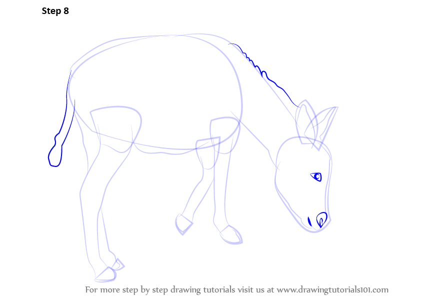 Learn How To Draw A Donkey Farm Animals Step By Step Drawing