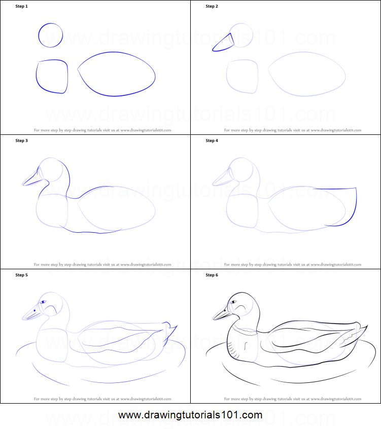 videos of how to draw animals step by step