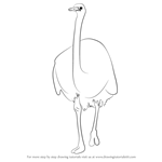How to Draw a Emu