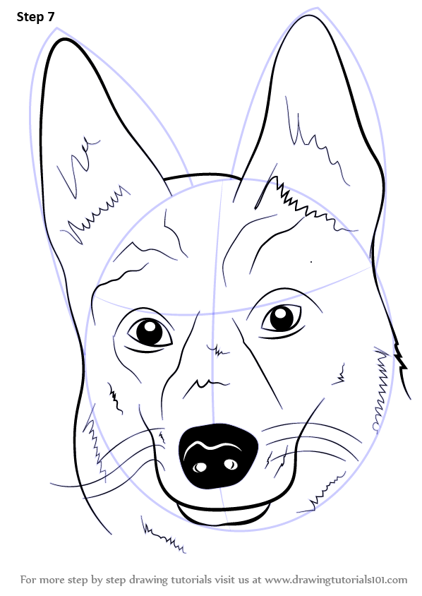 Learn How to Dr... Easy Dog Face Drawing