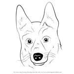 How to Draw German Shepherd Dog Face