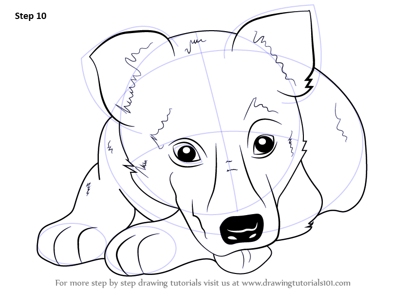 Learn How To Draw Boxer Puppy Face Farm Animals Step By Step Drawing