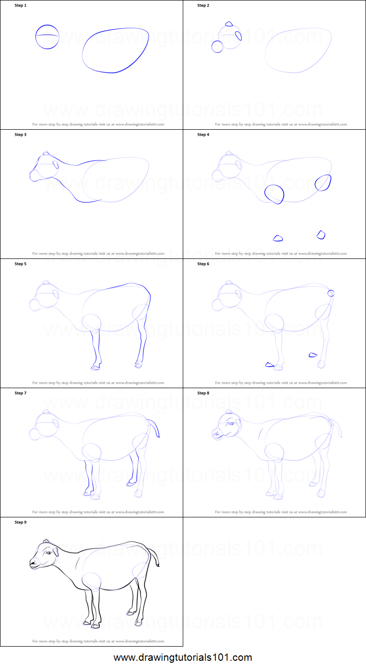 how to draw a goat printable step by step drawing sheet drawingtutorials101com