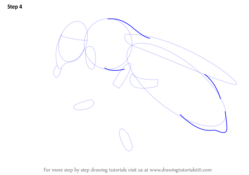 Learn How To Draw A Honey Bee Farm Animals Step By Step Drawing Tutorials