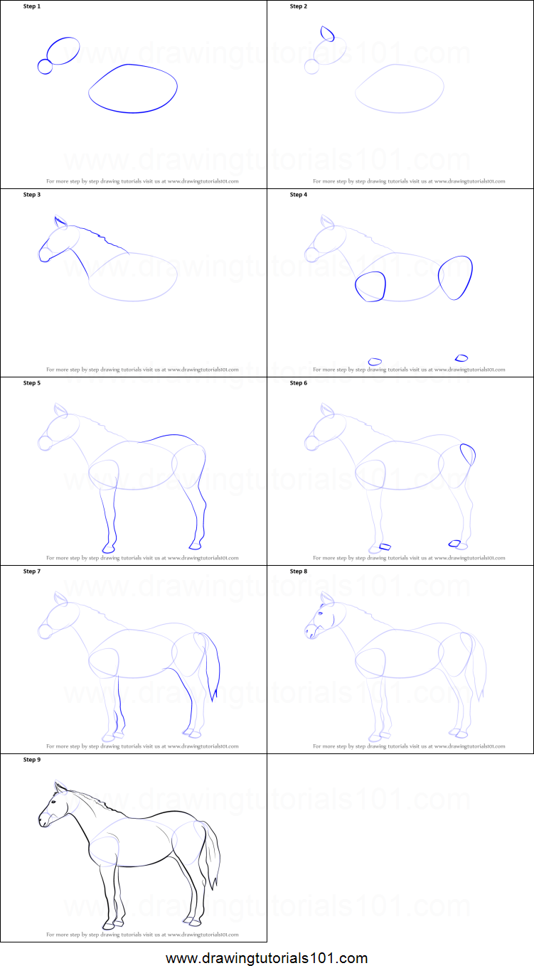 How To Draw A Horse Face Step By Step For Kids  Photo#23