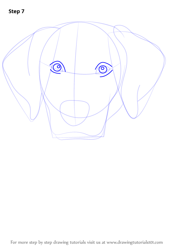 how to draw a puppy face