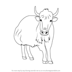 How to Draw a Yak
