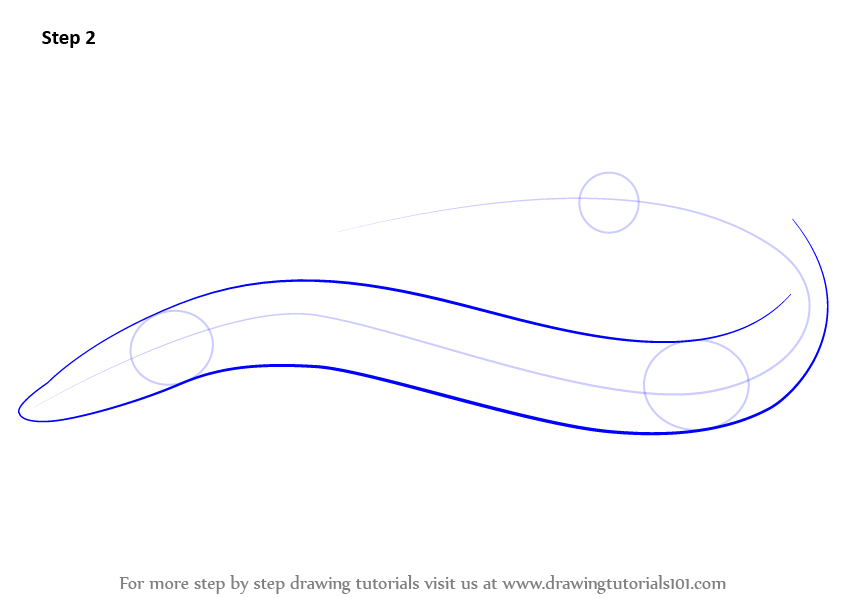 Learn How To Draw An American Eel Fishes Step By Step