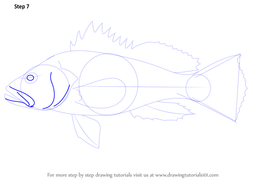 how to draw a bass drum step by step