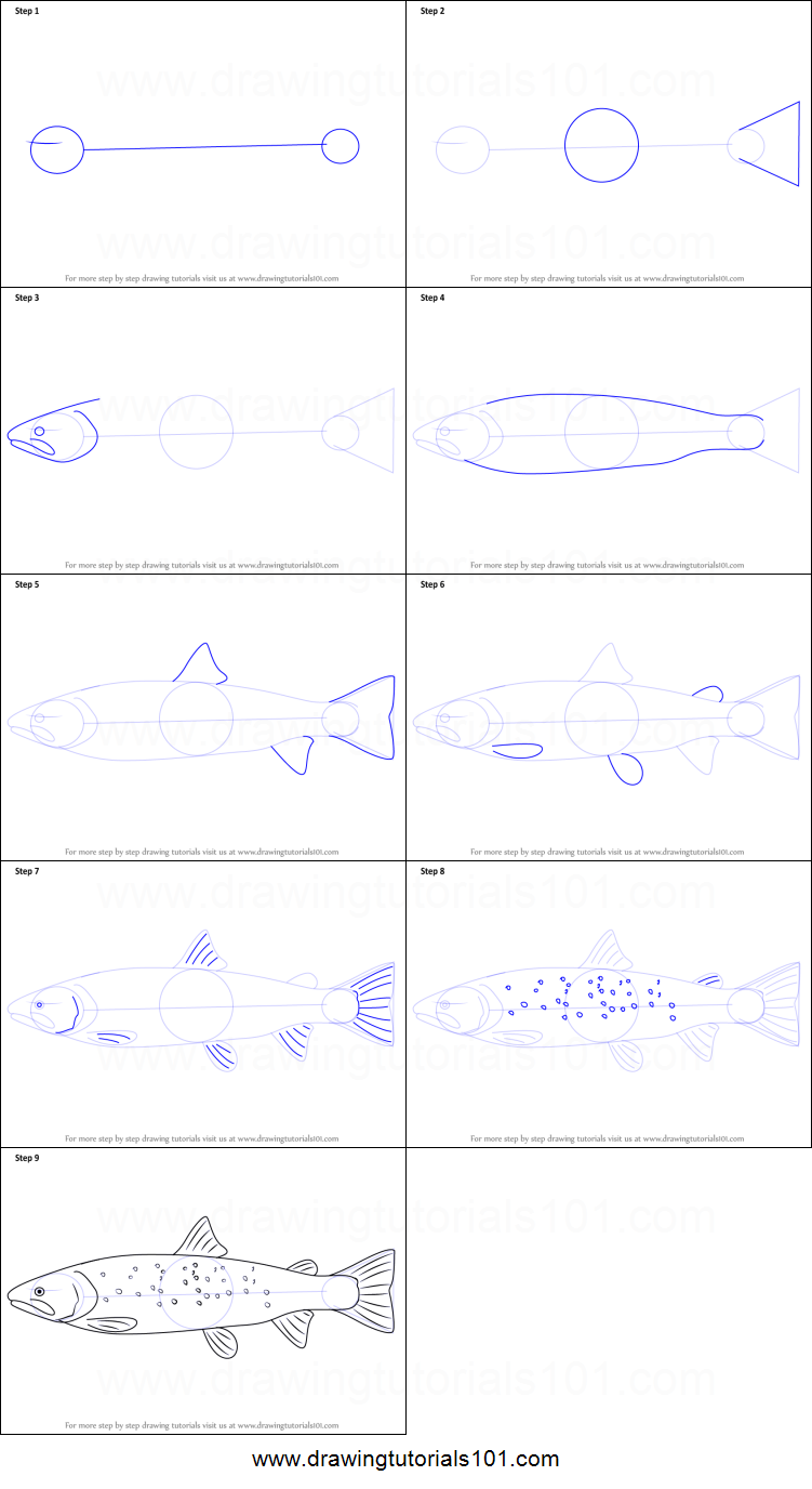 how to draw a trout fish step by step