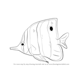 How to Draw a Butterflyfish