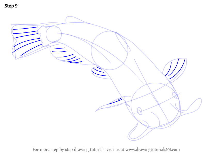 learn how to draw a catfish (fishes) step by step drawing tutorials Circulatory System Diagram Labeled draw lines as shown