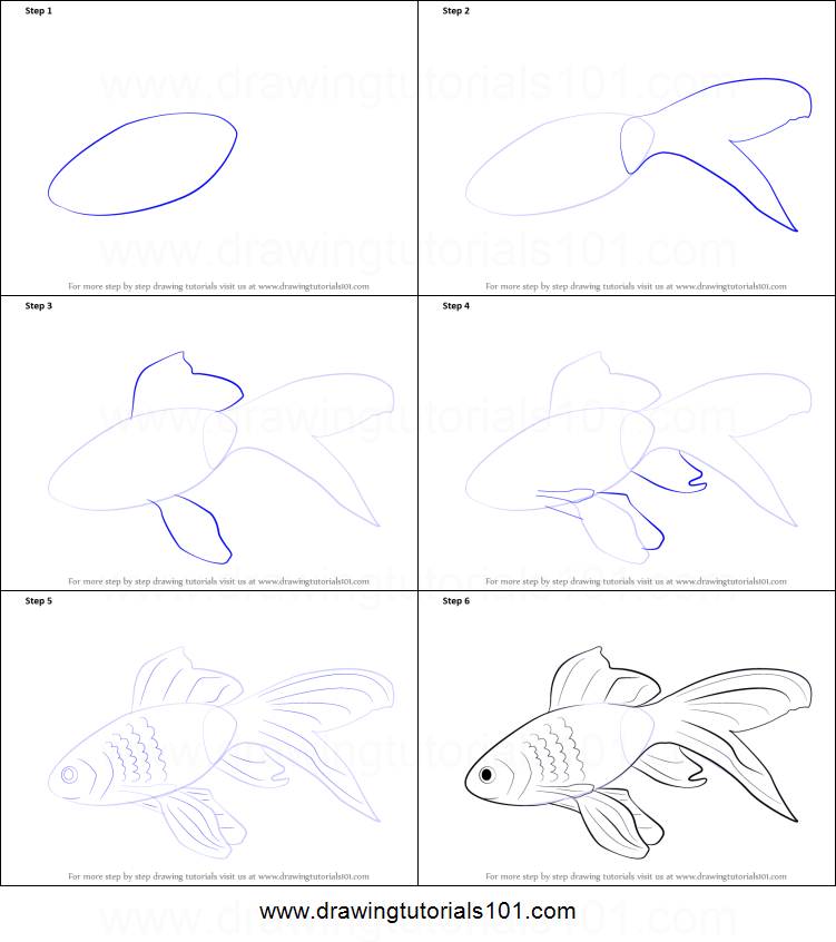 How to draw a gold fish printable step by step drawing for How to draw fish