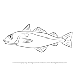How to Draw a Haddock