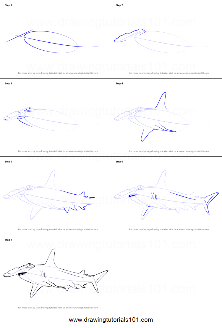 how to draw a hammerhead shark printable step by step drawing sheet drawingtutorials101com