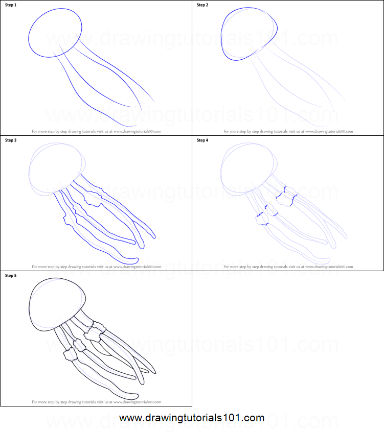 How to draw a jellyfish printable step by step drawing sheet drawingtutorials101 com