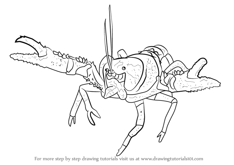 Learn How To Draw A Lamington Spiny Crayfish Fishes Step By Step