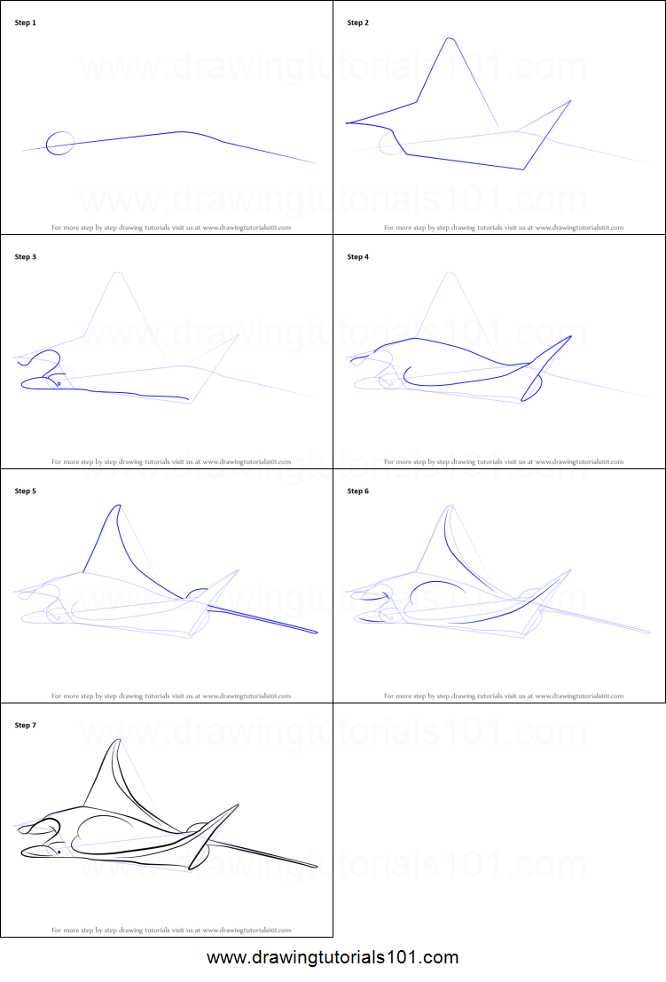 How To Draw A Manta Ray Printable Step By Step Drawing