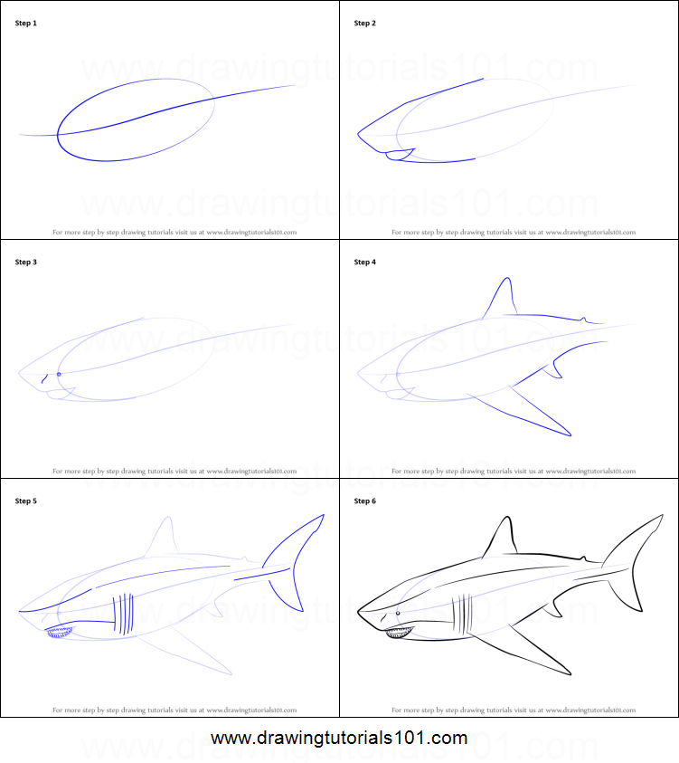 How to Draw a Megalodon printable step by step drawing sheet : DrawingTutorials101.com
