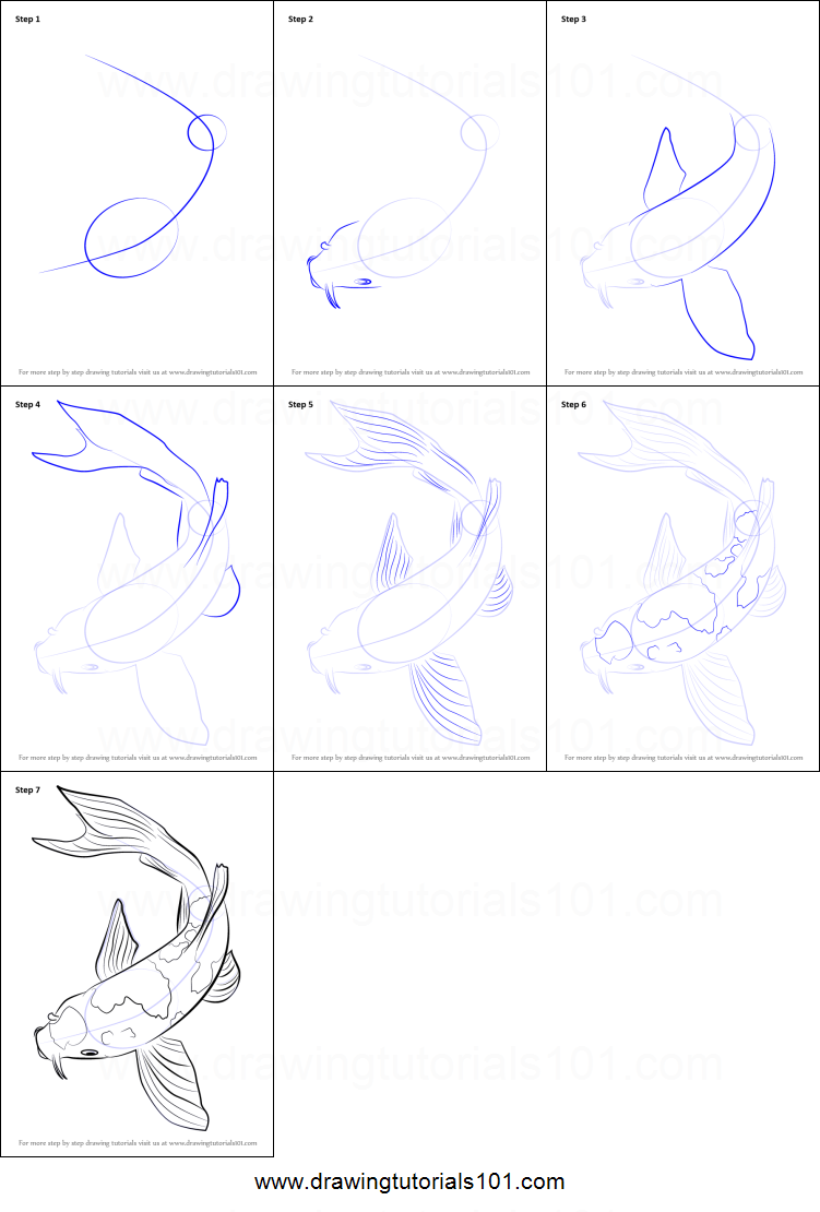 How to draw a koi fish printable step by step drawing for How to draw fish