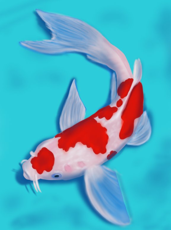 Learn how to draw a koi fish fishes step by step for Koi fish images
