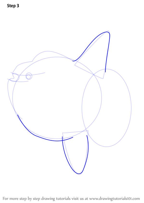 Learn How To Draw A Ocean Sunfish Fishes Step By Step Drawing