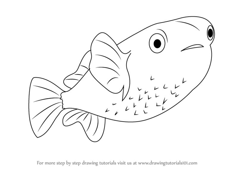 learn how to draw a porcupinefish fishes step by step drawing tutorials