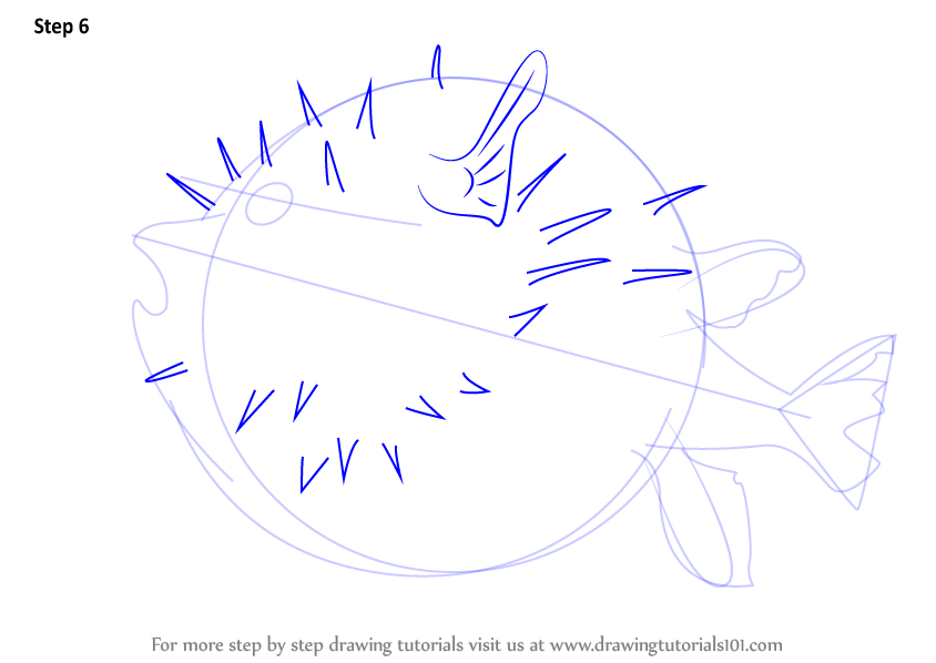 How to draw a real puffer fish